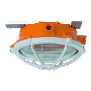 FLHY56 防水防尘防腐照明灯