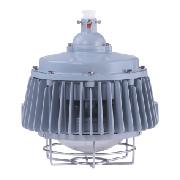 FLL70 LED 照明灯